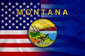 Waving USA and Montana State Flag — Stock Photo
