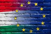 Hungary and European Union Flag painted on brick wall — Stock Photo