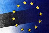 Estonia and European Union Flag painted on leather texture — Stock Photo