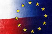 Poland and European Union Flag painted on leather texture — Stock Photo