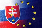 Slovakia and European Union Flag painted on leather texture — Stock Photo