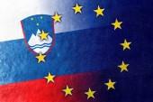 Slovenia and European Union Flag painted on leather texture — Stock Photo