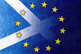 Scotland and European Union Flag painted on leather texture — Stock Photo