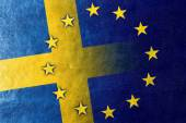 Sweden and European Union Flag painted on leather texture — Stock Photo