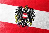 Austria Flag painted on leather texture — Stock Photo
