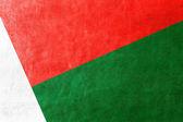 Madagascar Flag painted on leather texture — Stock Photo