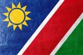 Bandiera della namibia dipinta sulla trama in pelle — Foto Stock