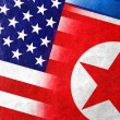 USA and North Korea Flag painted on leather texture — Stock Photo #59583255