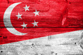 Singapore Flag painted on old wood plank texture — Stock Photo