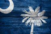 South Carolina State Flag painted on old wood plank texture — Stock Photo