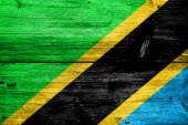 Tanzania Flag painted on old wood plank texture — Stock Photo