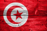 Tunisia Flag painted on old wood plank texture — Stock Photo