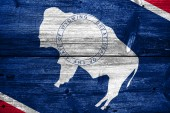 Wyoming State Flag painted on old wood plank texture — Stock Photo