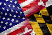 USA and Maryland State Flag painted on old wood plank texture — Stock Photo