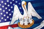 革の質感に描かれたアメリカ、ルイジアナ州の旗 — ストック写真