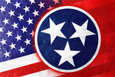 USA and Tennessee State Flag painted on leather texture — ストック写真