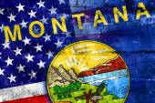 USA and Montana State Flag painted on grunge wall — Stock Photo
