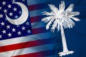 Waving USA and South Carolina State Flag — Stock Photo