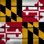 Bandera del estado de Maryland sobre fondo de madera — Foto de Stock   #61819769