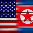 USA and North Korea Flag on wood background — Photo #61909309