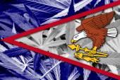 Arizona State Flag on cannabis background. Drug policy. Legalization of marijuana — Stock Photo