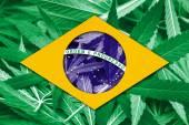 Brazil Flag on cannabis background. Drug policy. Legalization of marijuana — Stock Photo