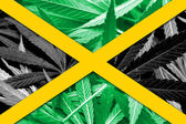 Jamaica Flag on cannabis background. Drug policy. Legalization of marijuana — Stock Photo