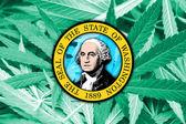 Washington State Flag on cannabis background. Drug policy. Legalization of marijuana — Stock Photo