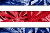 Costa Rica Flag on cannabis background. Drug policy. Legalization of marijuana — Stock Photo