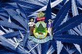 Maine State Flag on cannabis background. Drug policy. Legalization of marijuana — Stock Photo
