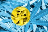 Palau Flag on cannabis background. Drug policy. Legalization of marijuana — Stock Photo