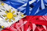 Philippines Flag on cannabis background. Drug policy. Legalization of marijuana — Stock Photo