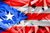 Puerto Rico Flag on cannabis background. Drug policy. Legalization of marijuana — Stockfoto