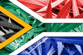 South Africa Flag on cannabis background. Drug policy. Legalization of marijuana — Stock Photo