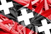 Amsterdam City Flag on cannabis background. Drug policy. Legalization of marijuana — Stock Photo