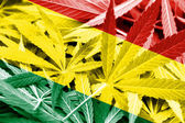 Bolivia Flag on cannabis background. Drug policy. Legalization of marijuana — Stock Photo