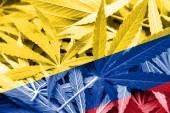 Colombia Flag on cannabis background. Drug policy. Legalization of marijuana — Stock Photo