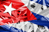 Cuba Flag on cannabis background. Drug policy. Legalization of marijuana — Stock Photo