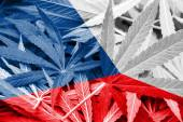 Czech Republic Flag on cannabis background. Drug policy. Legalization of marijuana — Stock Photo