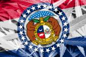 Missouri State Flag on cannabis background. Drug policy. Legalization of marijuana — Zdjęcie stockowe
