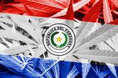 巴拉圭国旗大麻背景上。药物政策。大麻合法化 — 图库照片