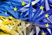 Ukraine and EU Flag on cannabis background. Drug policy. Legalization of marijuana — Stock Photo