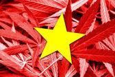 Vietnam Flag on cannabis background. Drug policy. Legalization of marijuana — Stock Photo