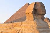The Sphinx of Giza - Cairo, Egypt — Stock Photo
