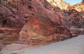 Elephant Shaped Rock - Petra, Jordan — Stockfoto