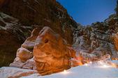 Elephant Shaped Rock - Petra, Jordan — Stock Photo