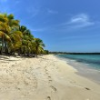 Beach along Isla Catalina, Dominican Republic — Stock Photo #54772943