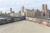 Vue sur Manhattan de Roosevelt Island — Photo