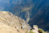 Colca Canyon, Peru Panorama — 图库照片