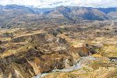 Colca Canyon, Peru — Stockfoto